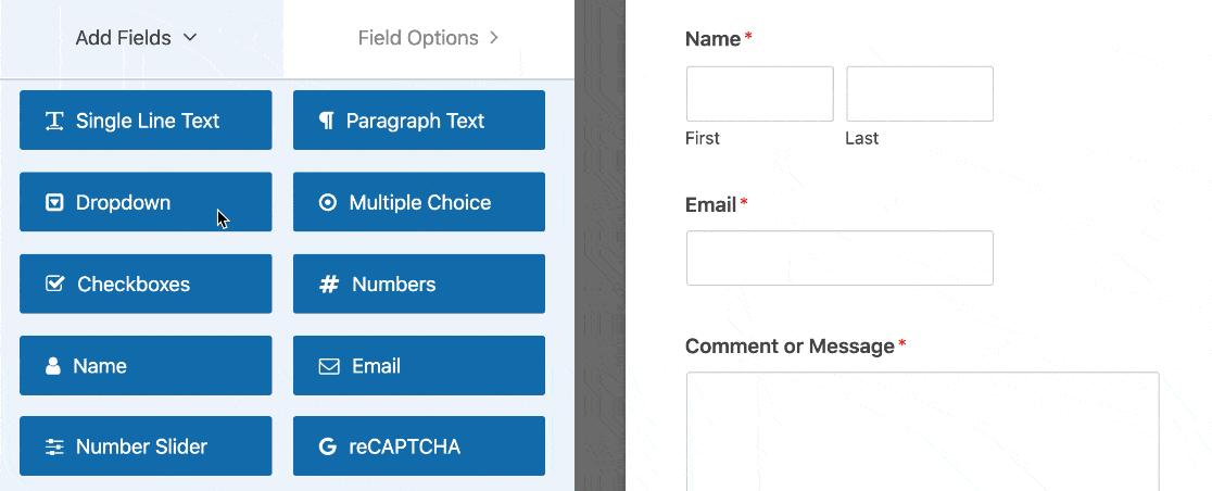 form drop down options