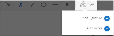 Adobe Reader's sign options